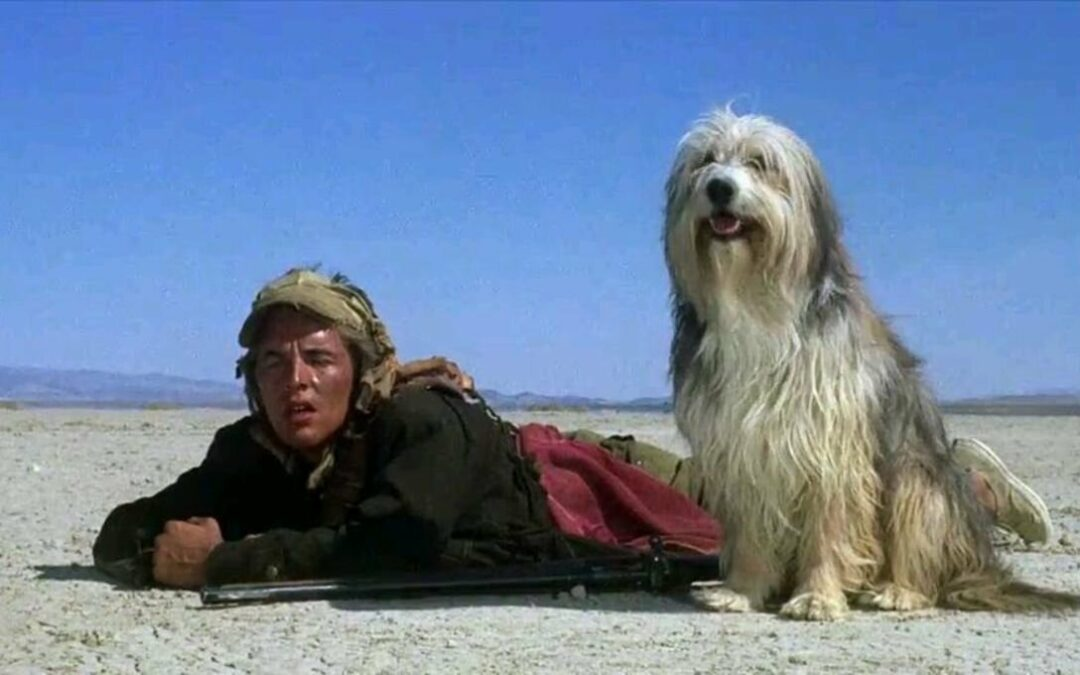 A Boy and His Dog (1975)